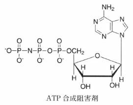 ATP analogue.png