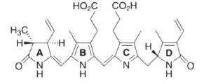 phycoerythrobilin.png
