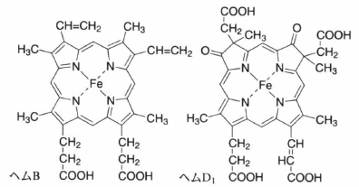 hemoprotein.png
