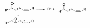 lipid alkoxyl radical.png